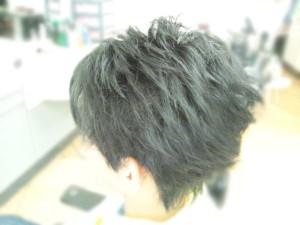 DSC_0728