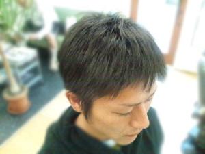 DSC_0803